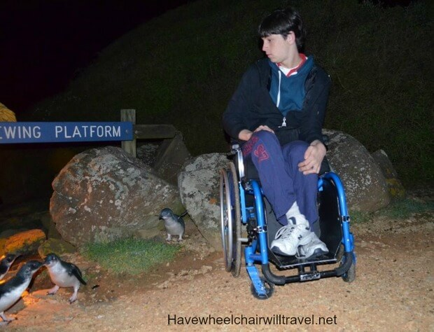 have wheelchair will travel