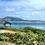 Wheelchair Accessible St Maarten / St Martin: 1 Island, 2 Countries