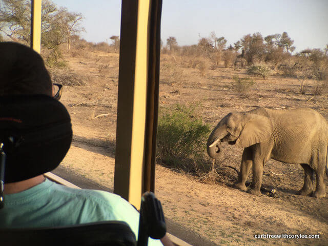 why go on safari south africa