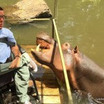 That time a hippo attacked me in South Africa…