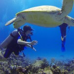 Accessible Diving in the Philippines