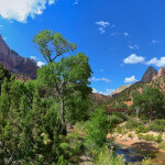 4 of the Best Wheelchair Accessible Trails in U.S. National Parks